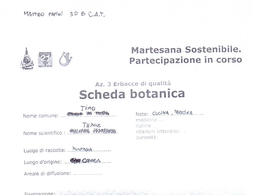 Scheda botanica - Papini Matteo